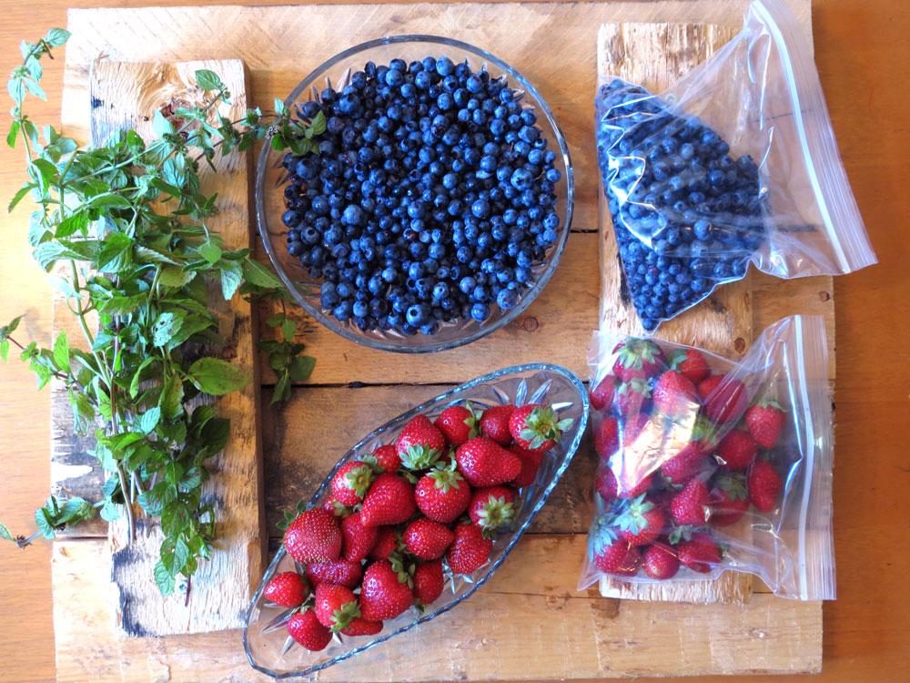 Is Fruit Hindering your Healing?