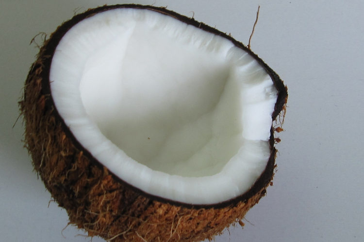 How to purge the body of Parasites: Raw Coconut Vermifuge and Diametaceous Earth!!